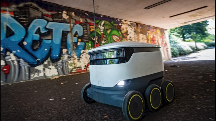 This Robot Army Delivers Food, Sees Business Boom Amid Pandemic
