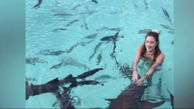 Scary Stuff! Video Shows Woman Posing with a Scary Amount of Sharks