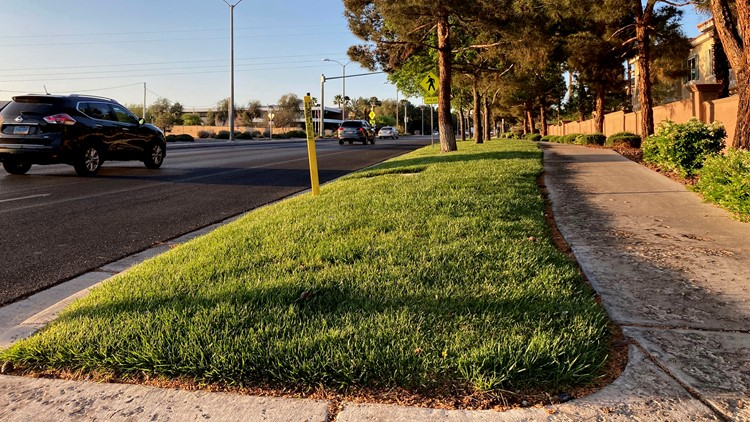 Las Vegas wants to ban grassy areas nobody uses to save water