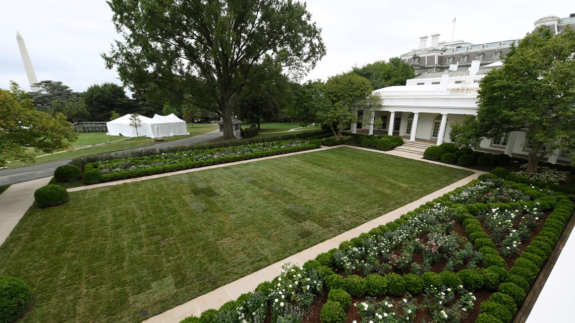 White House Rose Garden Set For First Lady Speech Wnep Com