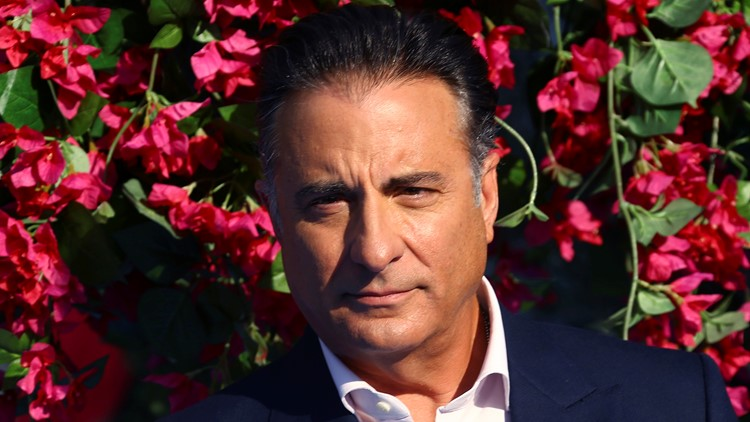 Reports: Cuban-American 'Father of the Bride' remake to star Andy Garcia
