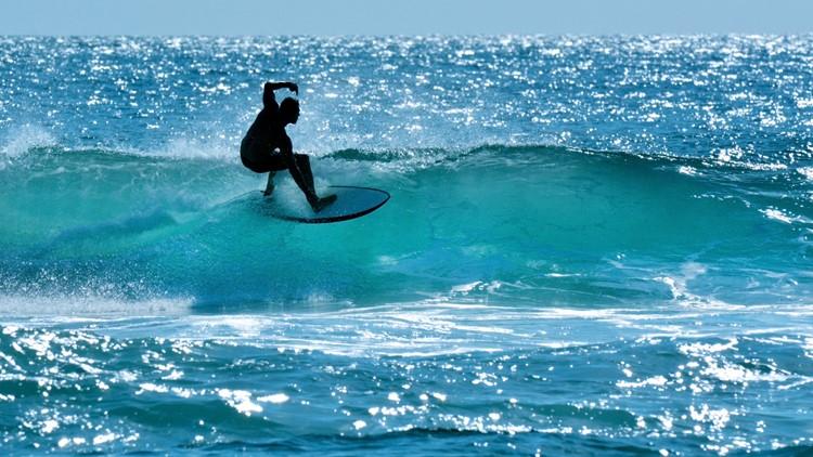 Shark kills surfer off Australian east coast