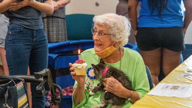 Cupcakes and kittens: Minnesota animal shelter throws 100th birthday party for volunteer