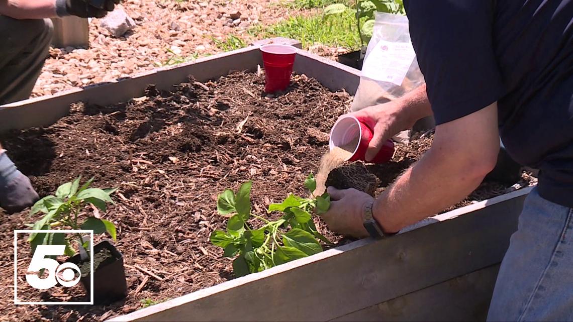 5NEWS Garden Club: Picking the best fertilizer for summer crops
