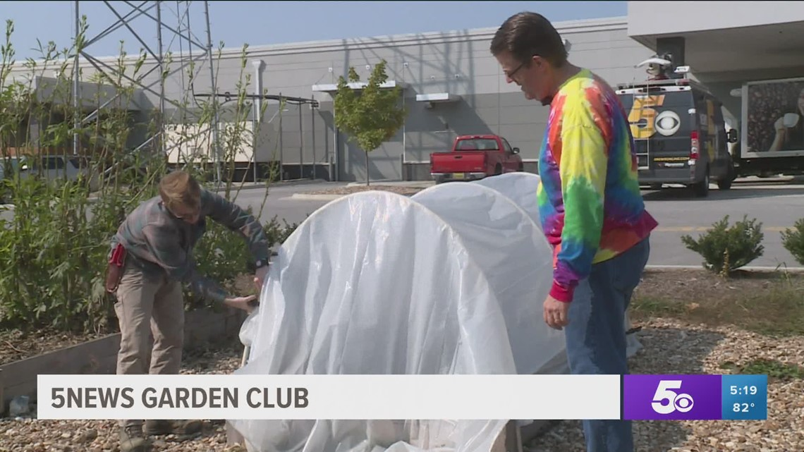 Garden Club: How to protect your garden from the cold