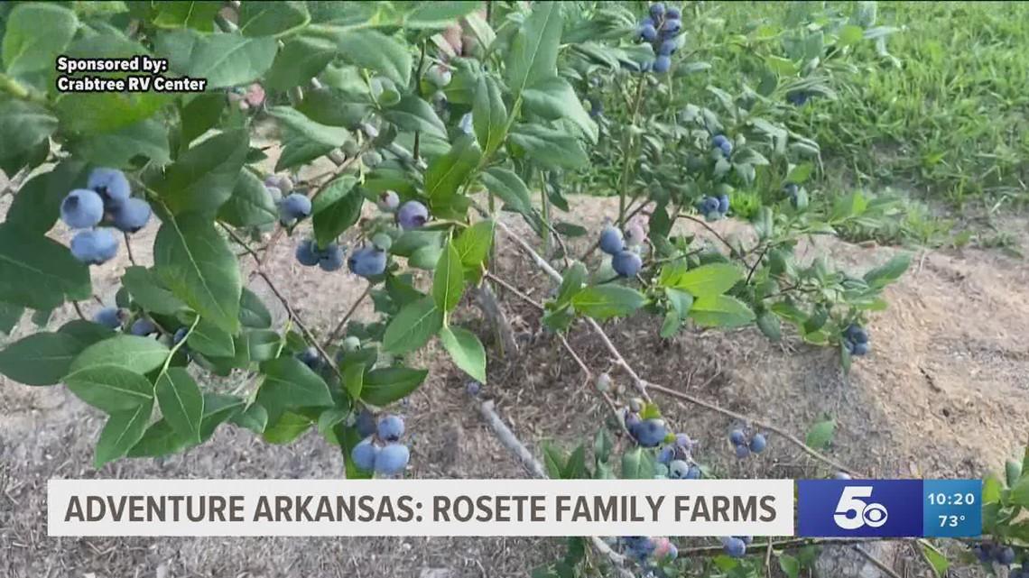 Adventure Arkansas: Rosete Family Farms
