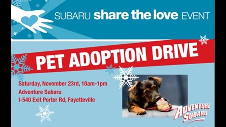 share the love with adventure subaru pet adoption drive 5newsonline com share the love with adventure subaru