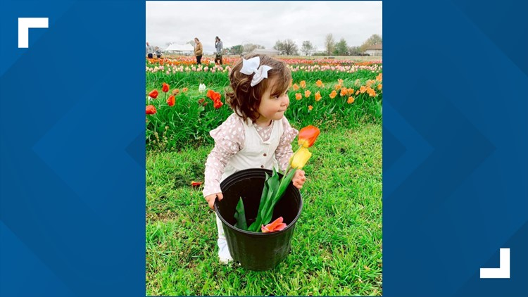 Northwest Arkansas' first U-Pick tulip farm sets last day of inaugural season for April 22