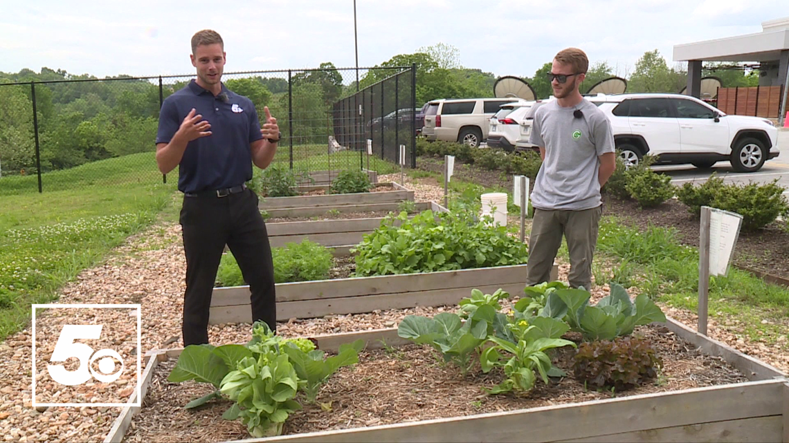 5NEWS Garden Club: Summer weather outlook