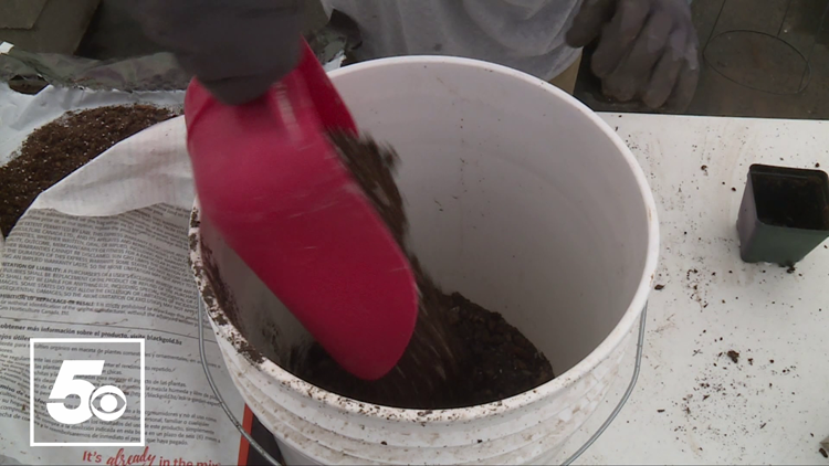 5NEWS Garden Club: Bucket Gardening