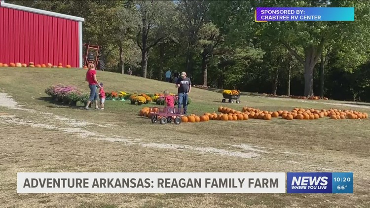Adventure Arkansas: Reagan Family Farm