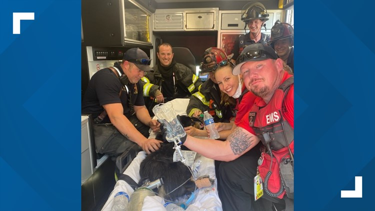Donated oxygen masks help rescue dog caught in Fort Smith apartment fire