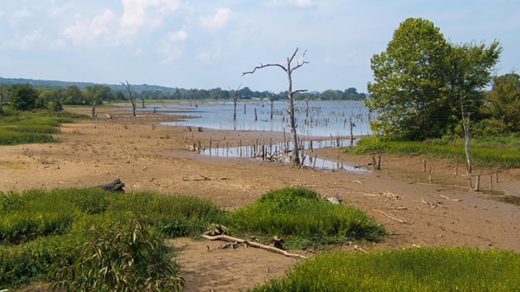 Drawdown planned for Lake Jack Nolen in Greenwood after Labor Day