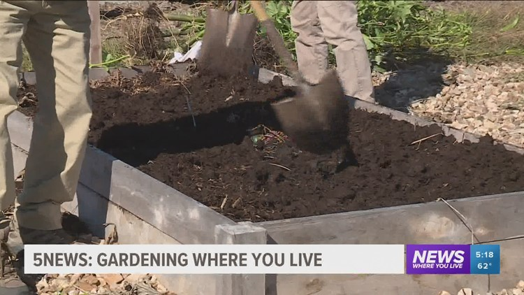 Garden Club: How to Prepare Your Beds for Next Year