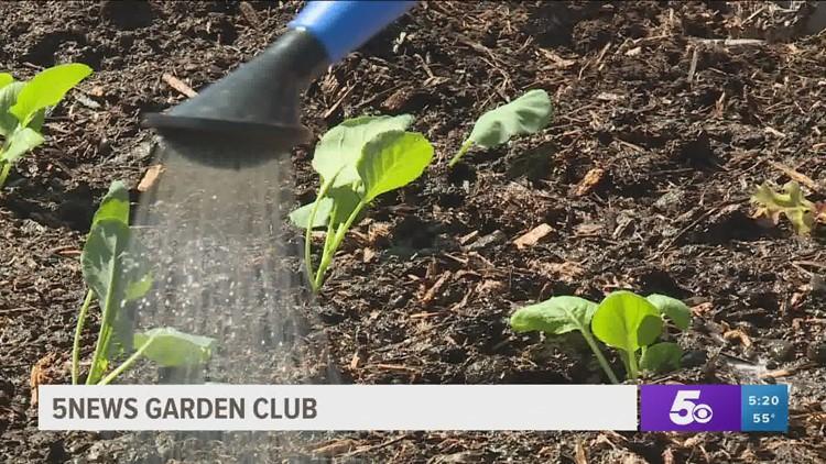 5NEWS Garden Club - Fertilizing & Watering First Grow of the Season