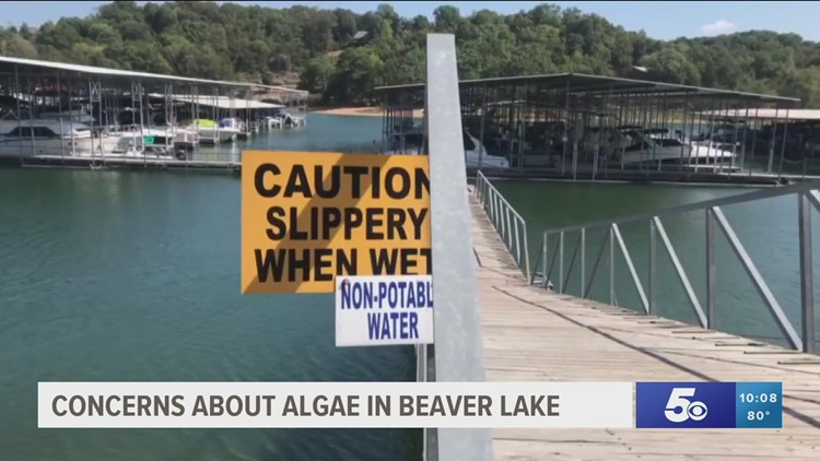 Beaver Water District says algae is to blame for taste/odor issues in drinking water