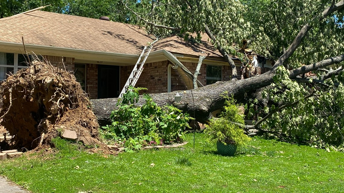 Many Alma residents assessing damages after trees fall on homes