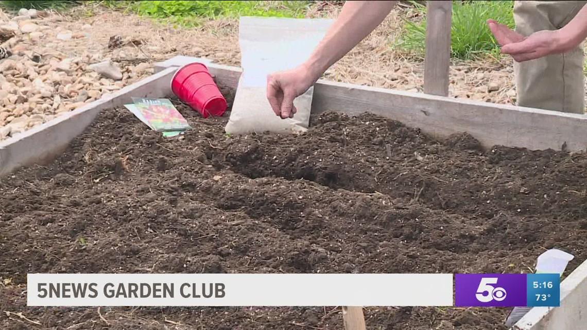5NEWS Garden Club: Making Sure Your Plants Survive