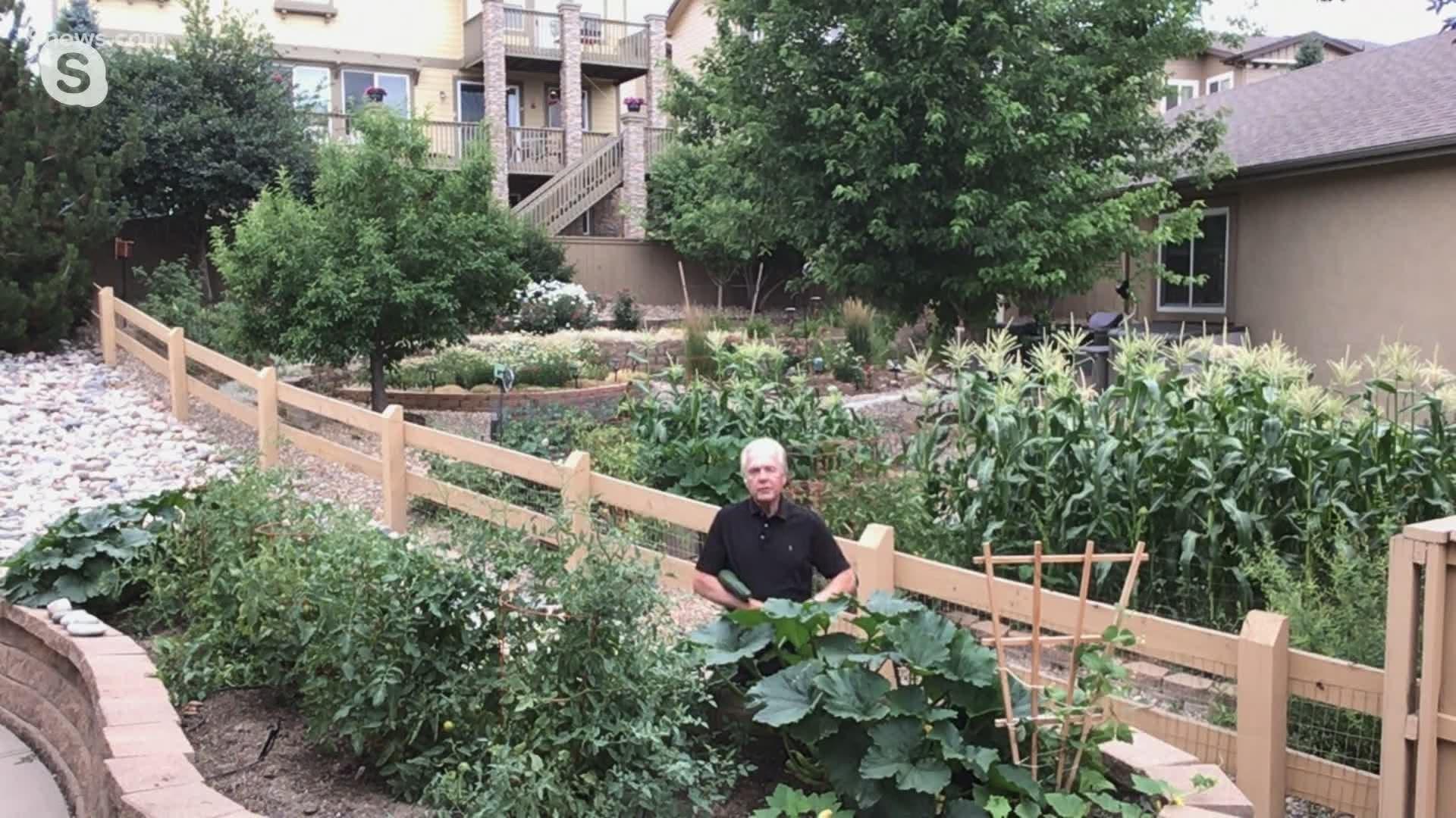 Colorado Garden Centers See Big Sales Amid Covid Pandemic Wthr Com