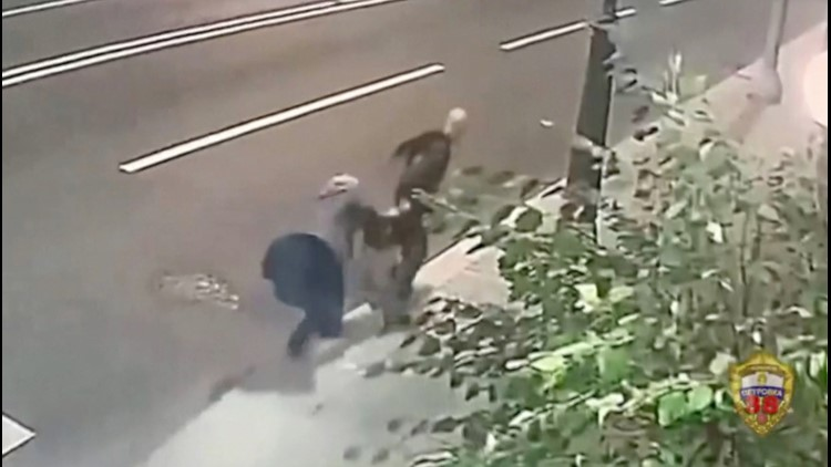 Elderly Woman Fights Off Robber as He Tries to Snatch Her Bag