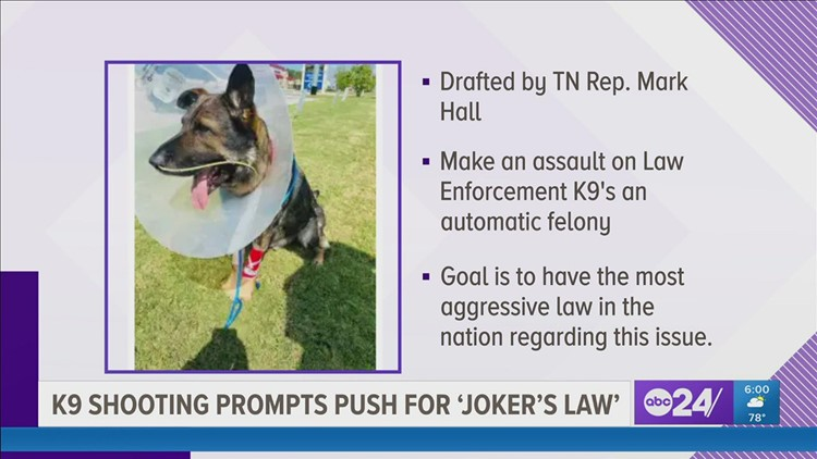 Joker's Law | East Tennessee lawmaker wants to make it an automatic felony to harm a law enforcement animal