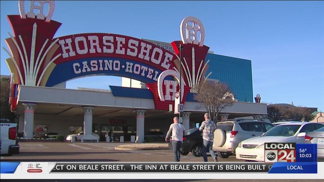 Casinoroom swedish vallhund mixcraft