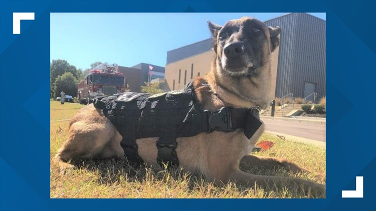K9 who served Germantown Police Department dies suddenly