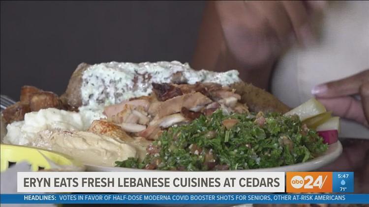 Eryn Eats: Authentic Lebanese cuisine