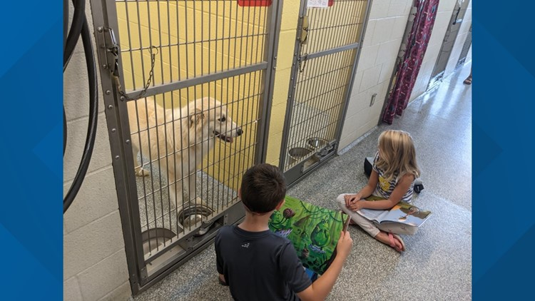 Parents read to their kids, but this group of children reads to shelter animals