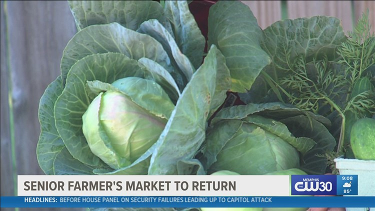 Fresh fruits and vegetables for eligible seniors in Shelby County