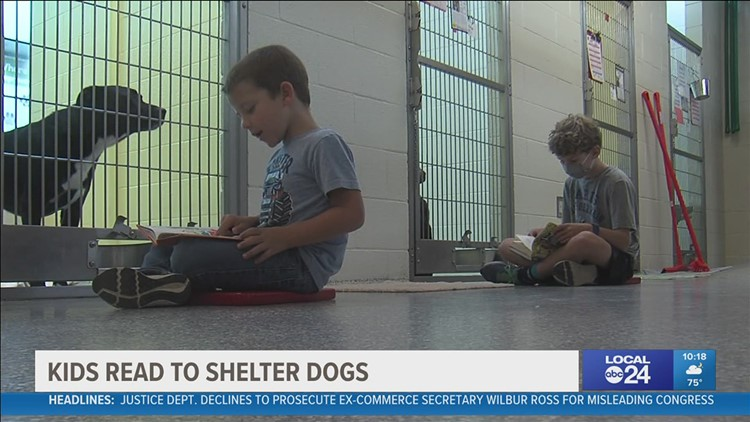 Parents will read to their kids but this group of children read to shelter animals