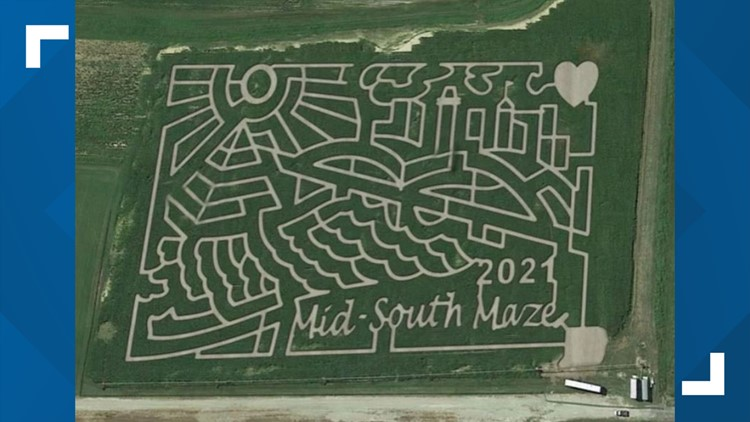 Twists and turns await you at the Mid-South Corn Maze
