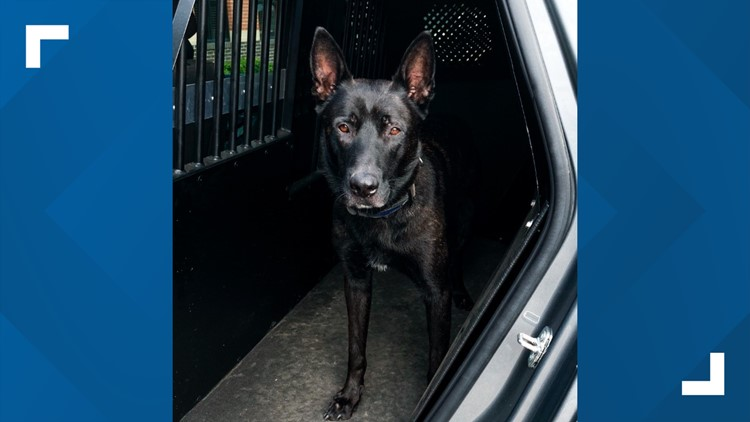 Shelby County K9 joins U.S. Marshals Task Force