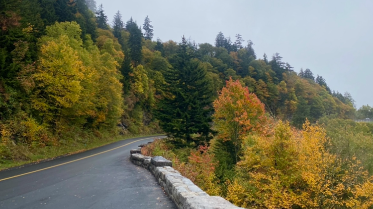 Leaves begin changing colors in the Great Smoky Mountains