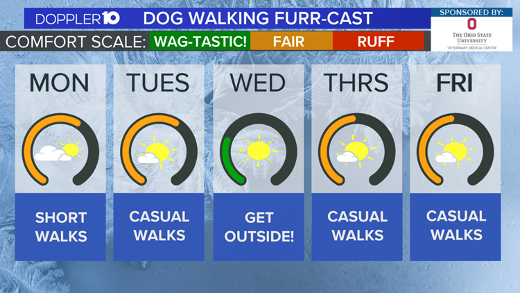 Dog Walkers Weekly Furr-cast | March 1st, 2020