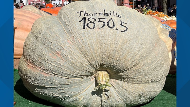 2021 Circleville Pumpkin Show giant pumpkin winner weighs in at more than 1,850 pounds