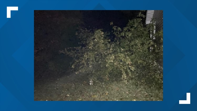Damage left in several central Ohio counties after overnight tornado warnings