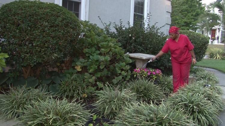 South Carolina woman finds her peace amid 300 plants. Neurology suggests she's onto something