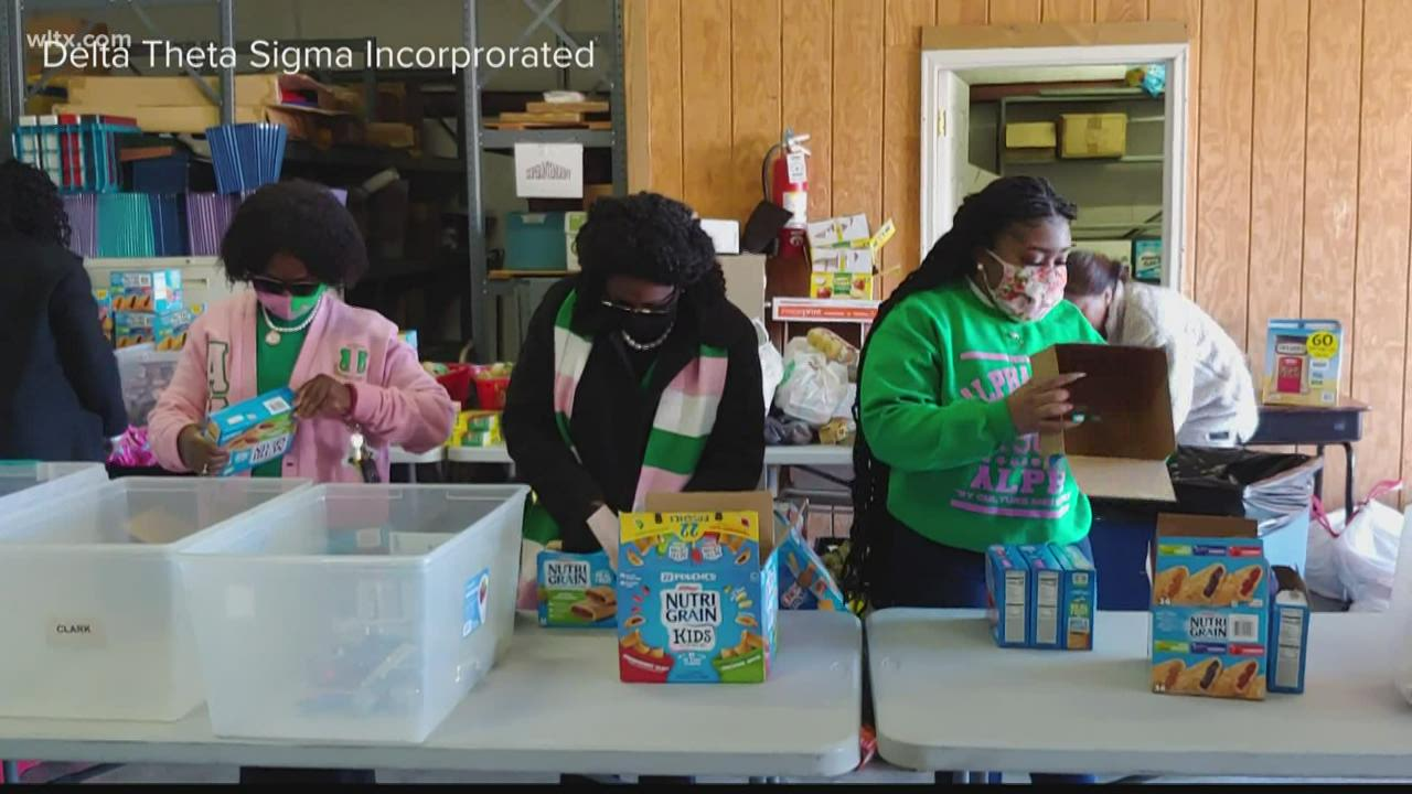 Delta Sigma Theta sorority holds MLK Day food drive