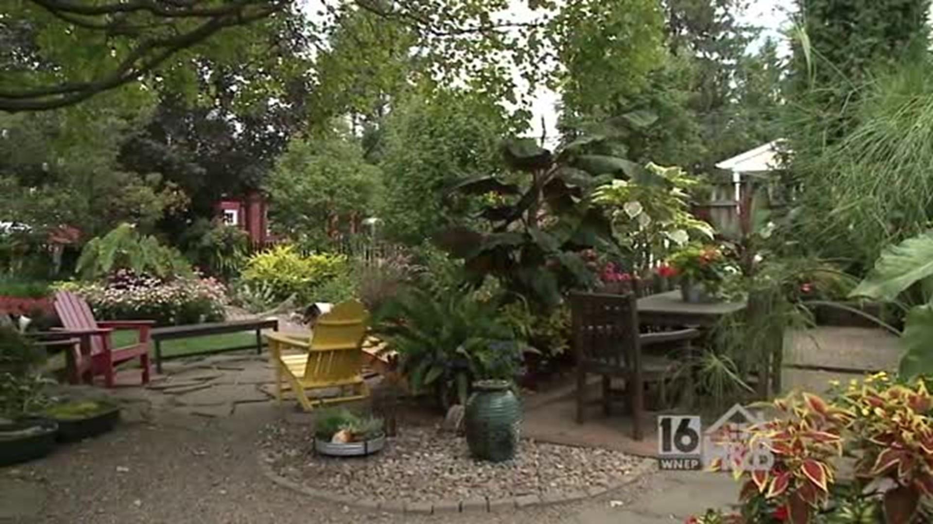 Late Summer Garden Tips | wnep.com