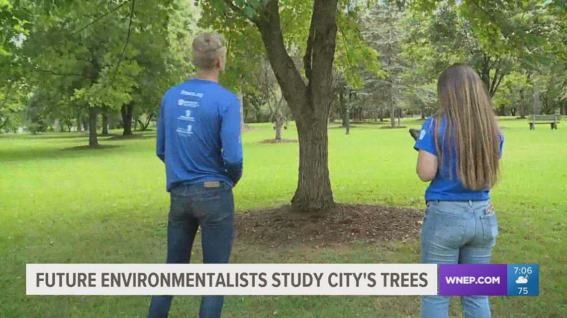 Pennsylvania Outdoor Corps studying trees in Williamsport
