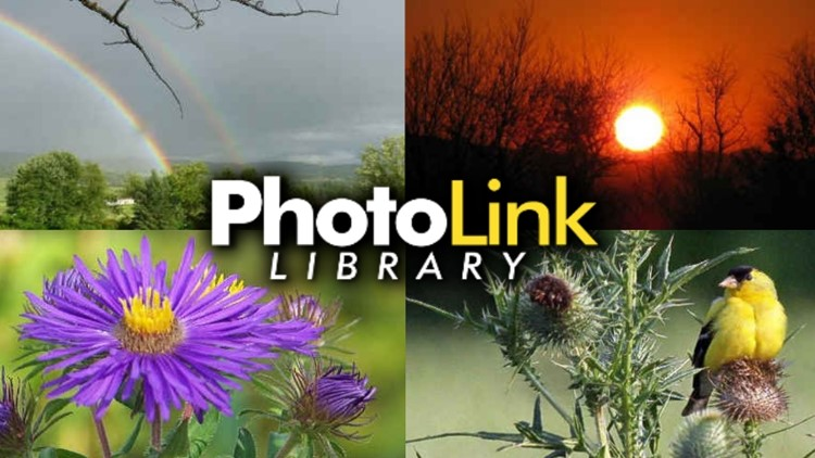 PhotoLink Library