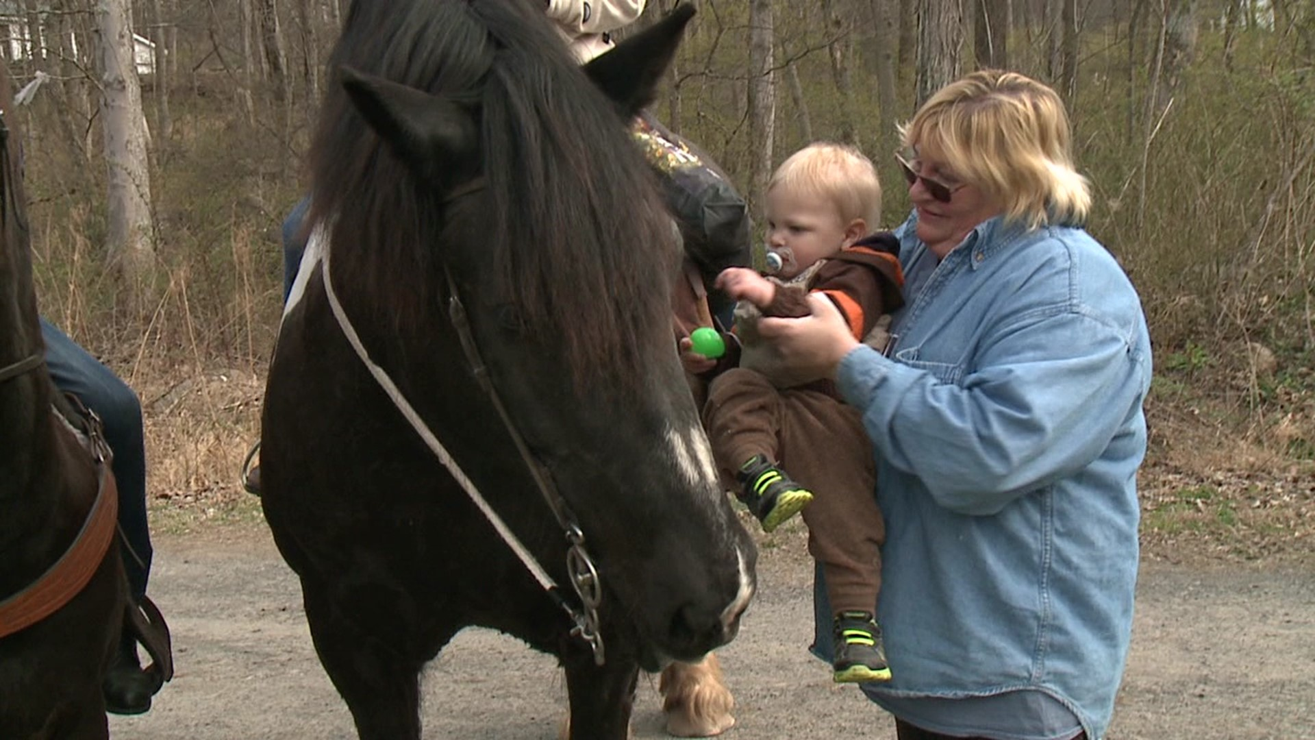 Easter Eggs Delivered On Horseback Wnep Com