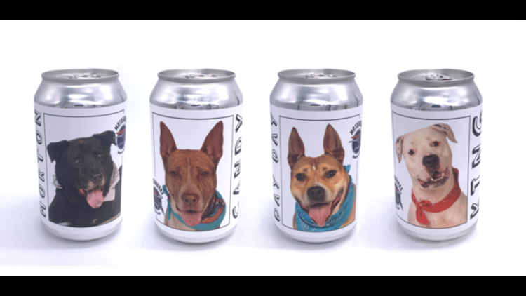 Florida Brewery Releases Beer Cans Featuring Dogs Ready to Be Adopted