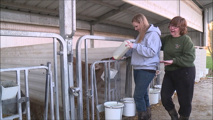 Celebrating Women's History Month with a mother-daughter dairy farm
