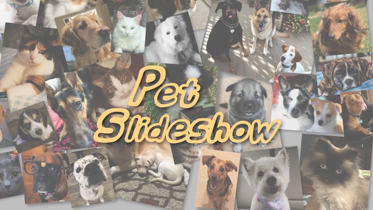 Pet Slideshow