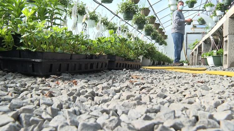 Garden centers expect another busy season