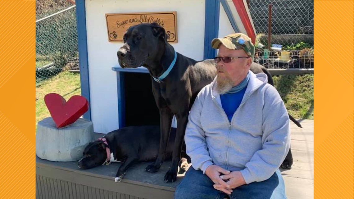 Reasons to Smile: Animal rescuer in Carbon County credits shelter dogs for helping him beat cancer