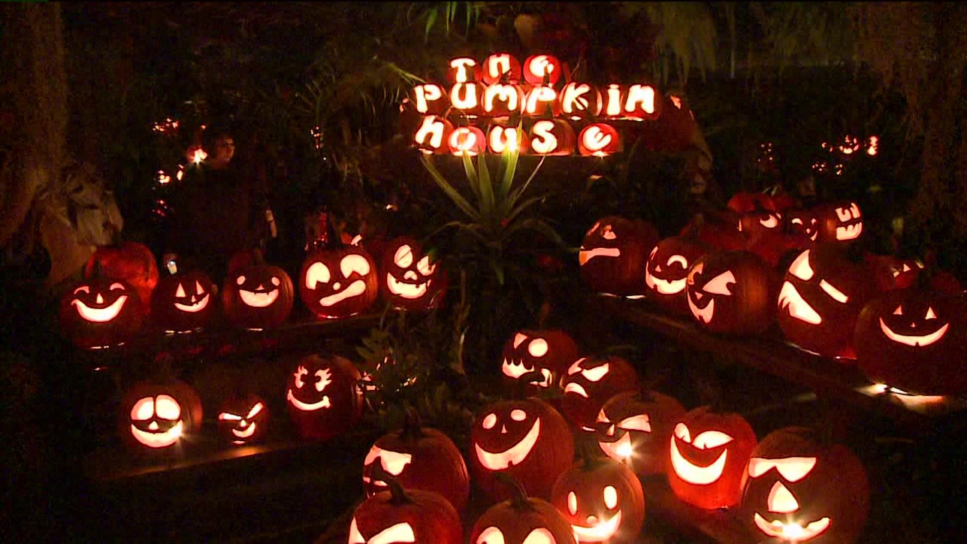 Final Night For Annual Pumpkin House At Creekside Gardens Wnep Com