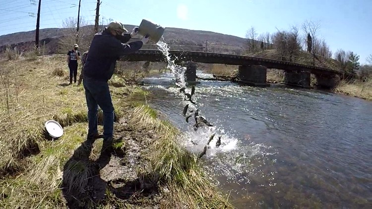 Filling trout streams On The Pennsylvania Road